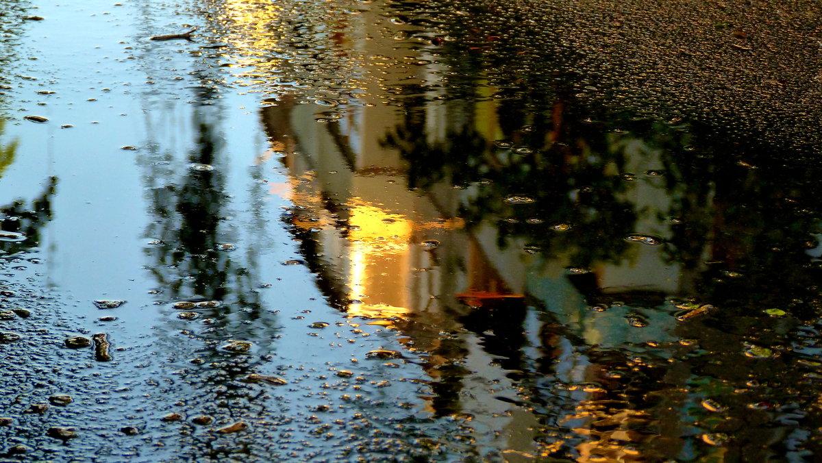 Майский дождь