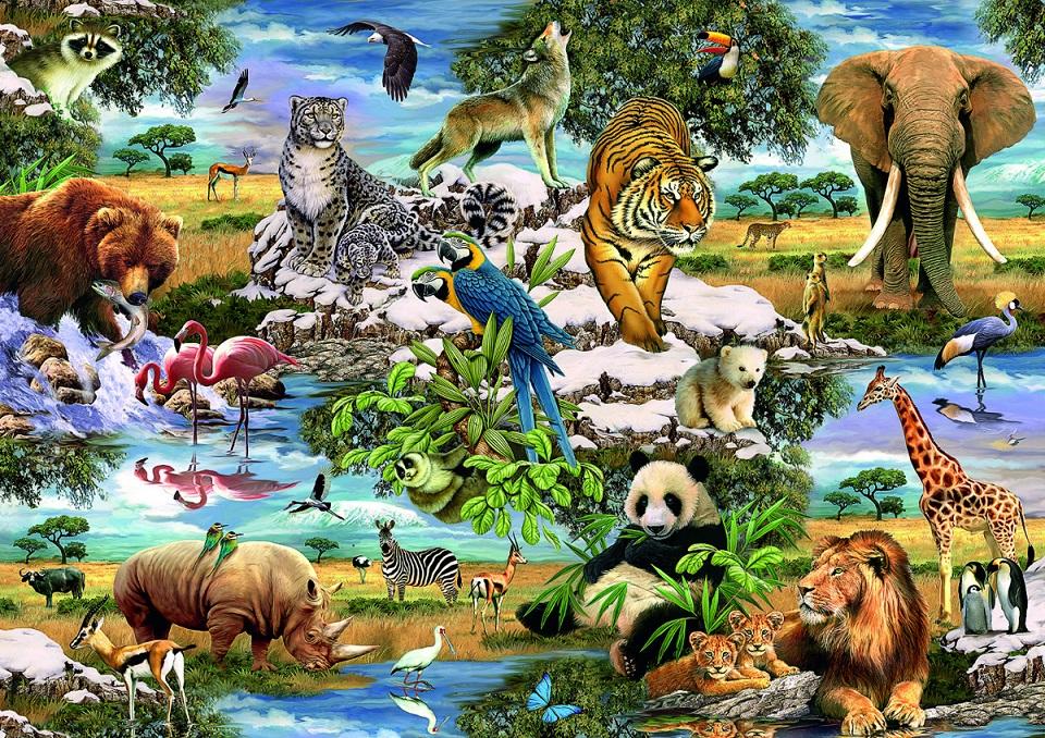 Таро Царства животных